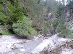 to je pa že v dolini Jerce, pogled po potoku navzgor ...